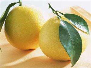 柚子的营养价值